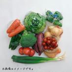 店長厳選☆旬のお野菜おまかせコース