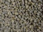 生豆 ブラジルサントス ピーベリー 5KG  (税込価格)