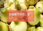 【特選品3キロ】 極早生新玉ねぎ