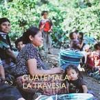 GUATEMALA -中深煎り- 100g