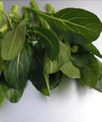 油菜芯  100g / ผักกวางตุ้ง