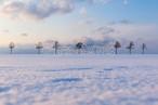 再会の冬メルヘン