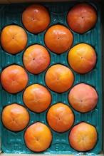 【贈答用 Lサイズ】樹上完熟富有柿 4kg箱