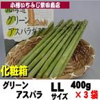 400g×3袋 化粧箱 北海道産 特選グリーンアスパラ LLサイズ