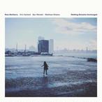 【ラスト1/LP】Ross McHenry - Nothing Remains Unchanged