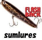sumlures / FLASH BACK