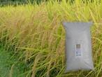 <新米>農薬不使用 佐渡コシヒカリ(在来種) 精米 5kg