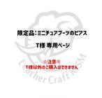 【T様専用ページ】限定品:ミニチュアブーツのピアス