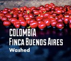 珈琲豆200g/コロンビア ブエノスアイレス農園ウォッシュト