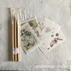 大人気!ビギナー向け柘植彩子セレクト日本の筆5本セット ポストカード付き