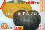 新鮮野菜【早期予約】カボチャ「恋するマロン」10Kg/箱 青森県産【業務用・大量販売】