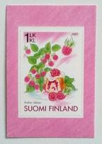 ラズベリー / フィンランド 2007