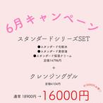 6月キャンペーン☆スタンダードセット+クレンジングゲル