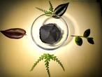 【新!】ヒマラヤ産 麻炭の薬草入り歯磨き粉10g