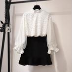 【set】2点セットエレガントドット柄ブラウス+ポケットスカート