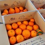 ワカヤマフルーツ★さよなら柑橘★柑橘7種位★デコポンがん詰め+セトカ、他★
