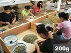 インドネシア |  アチェ&ベラスタギ ウェットハル | コーヒー豆200g