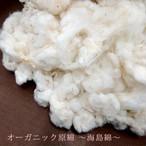 オーガニック原綿・海島綿(1kg)