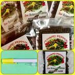 携帯ペン付ポンペイ・ブラックぺッパー 無農薬・無化学肥料 (Black pepper) 5袋
