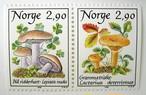 きのこ / ノルウェー 1988
