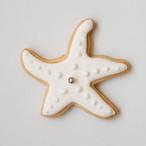 ヒトデ アイシングクッキー