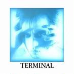 遠藤ミチロウ/TERMINAL(SHM-CD)