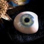 春の湖影の義眼