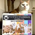 2019 マンチカンズ カレンダー(A4サイズ14枚リング綴じ)