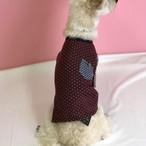 【犬服・ドッグウェア】ボーダー&ドット柄のカジュアルカットソー(長袖)