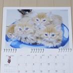 壁掛けカレンダーレフィル 子猫B(きな粉餅ちびーず)6種類セット