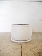 オーヴァル 陶器鉢 ホワイト (受皿付き)
