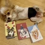 ポストカード3枚(夏、クリスマス、正月)