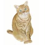 絵画 絵 ピクチャー 縁起画 モダン シェアハウス アートパネル アート art 14cm×14cm 一人暮らし 送料無料 インテリア 雑貨 壁掛け 置物 おしゃれ ネコ ねこ 猫 動物 アニマル キャット  デジタルアート ロココロ 画家 : rune 作品 : おすまし