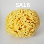 海綿スポンジ SA16