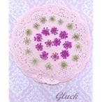 コンパクト押し花 レースフラワー(ホワイト&ピンク) 少量をパックにしてお届け! 押し花素材