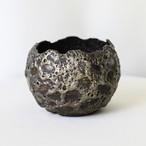 Gold Dwarf Pot(M)