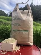 【玄米5kg】愛媛 自家農園減農薬栽培あきたこまち令和元年産新米!