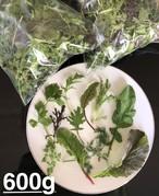 ベビーリーフ600g (Baby Leaf 600g)
