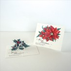 "Assemble kit set ""Holly & Poinsettia"""