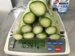 メガパラ(1kg)