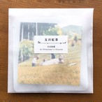 静岡「玉川茶」のティーバッグ