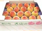 小牧・犬山の桃 20玉