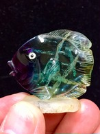 10) フローライト「熱帯魚」