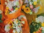 【5/30、5/31着】*季節のお任せ花束*