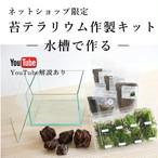 苔の森を作りたい 20cm水槽で作る苔テラリウム作製キット【ネットショップ限定】