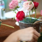お花を楽しむレッスンキット(通販) 6ヶ月コース(月1回)