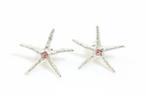 ピアス Starfish