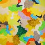 絵画 インテリア アートパネル 雑貨 壁掛け 置物 おしゃれ 現代アート 楽園 ロココロ 画家 : 眞野丘秋 作品 : 楽園のエネルギー#2