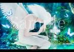 【受注生産】【A4サイズ複製画】モルフィウス姫の伝説