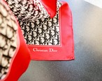 Christian Dior trotter scarf